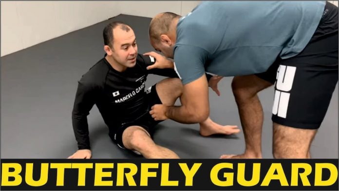 Butterfly Guard Basics